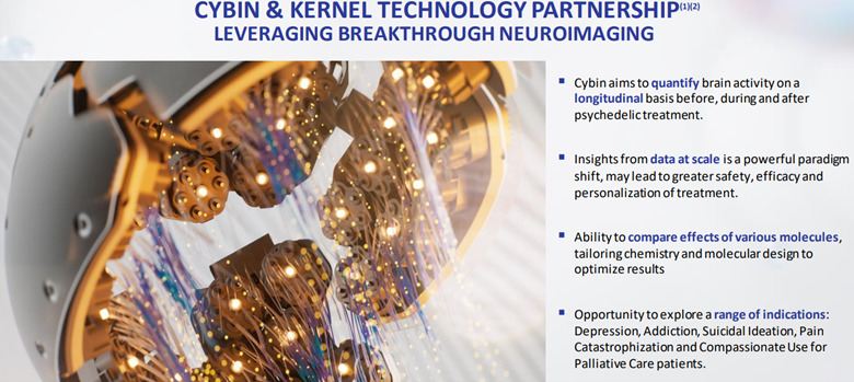 How Cybin is partnered with Kernel Technology for neuroimaging
